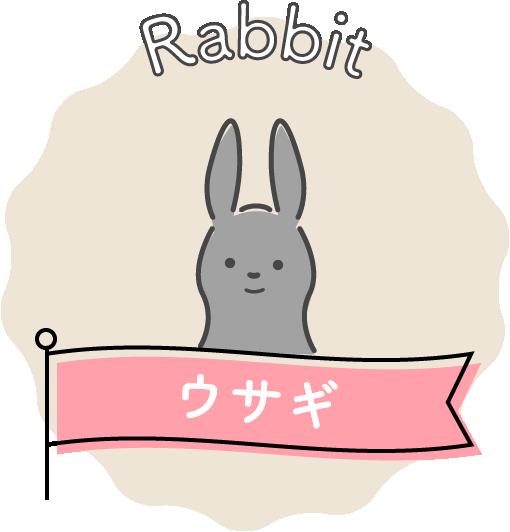 Rabbit ウサギ